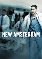 Search netflix New Amsterdam